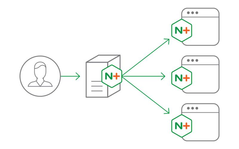 Hopla! Software único integrador de NGINX en España
